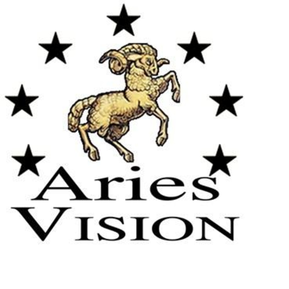 Aries-vision-25-shoes-cover-7714feb6d6c6d7809caecdaf293e9da